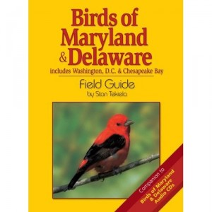 birds or maryland field guide